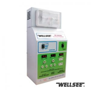 WELLSEE WS-ACM300 power inverter