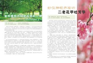The magazine of company-5